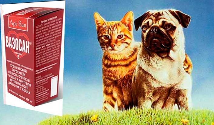 вазосан для собак инструкция