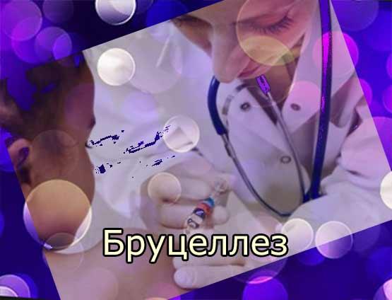Бруцеллез человека (биологические свойства возбудителя, симптомы, диагностика, лечение профилактика)
