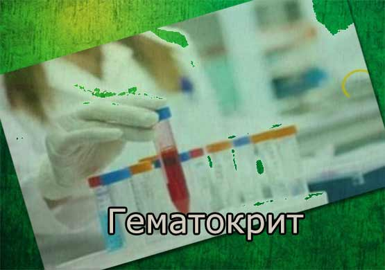 Гематокрит повышен