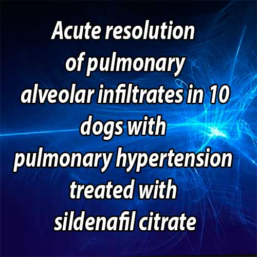 Acute resolution of pulmonary alveolar infiltrates in 10 dogs with pulmonary hypertension treated with sildenafil citrate: 2005-2014