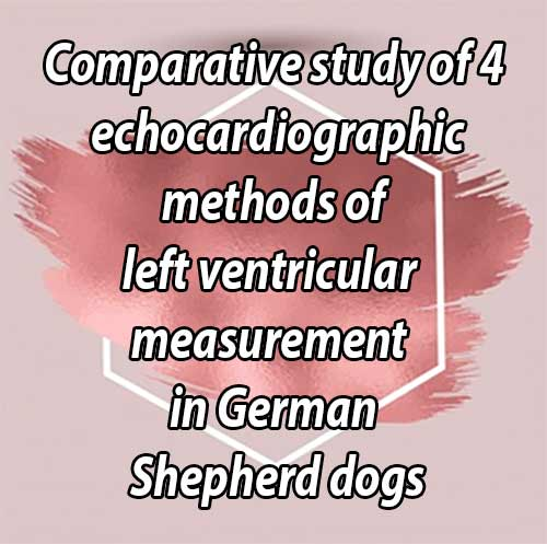 Comparative study of 4 echocardiographic methods of left ventricular measurement in German Shepherd dogs
