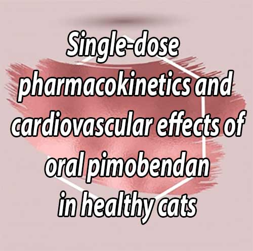 Single-dose pharmacokinetics and cardiovascular effects of oral pimobendan in healthy cats