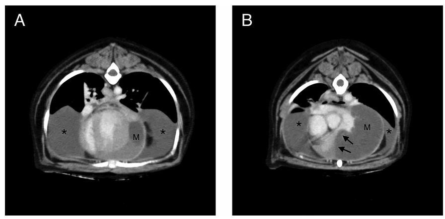Transverse post contrast CT images (W: 320, L: 30) at the level of the left ventricle